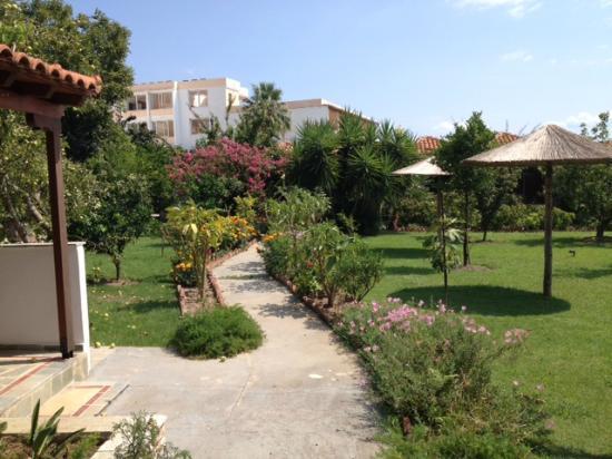 Maniatis Garden張圖片