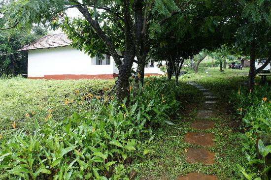 Swarga Home Stay: garden inside the homestay