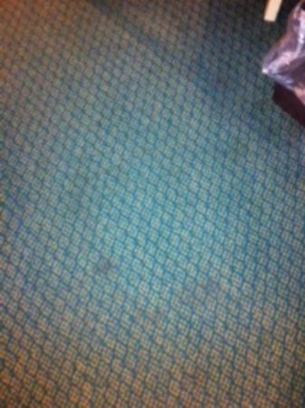 Microtel Inn & Suites by Wyndham Christiansburg/Blacksburg: Carpet