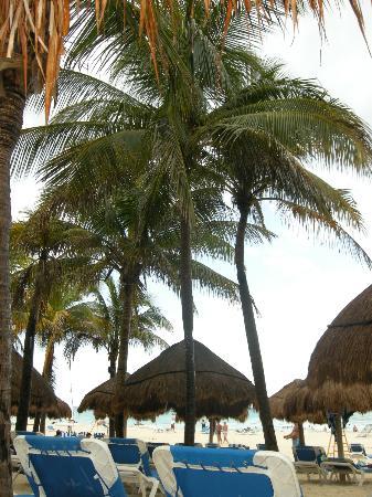 Viva Wyndham Azteca: spiaggia