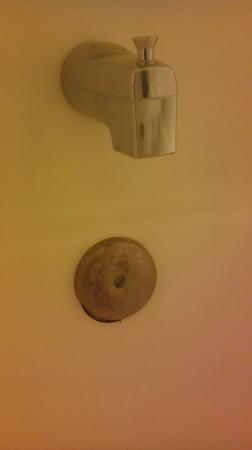 Quality Inn: rusted bathtub spout