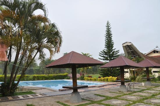 Rantepao Lodge: Pool