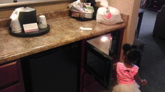 Hampton Inn & Suites Toledo-Perrysburg: Kitchenette area with sink, mini fridge, and microwave