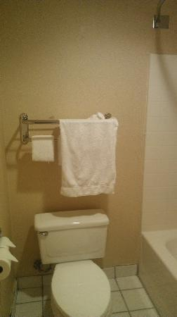 Wave Hotel: Hand towels only?
