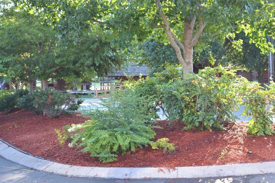 Nashville KOA: Beautiful Landscaping