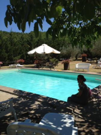 Agriturismo Del Quondam Vittorio: La fantastica piscina!