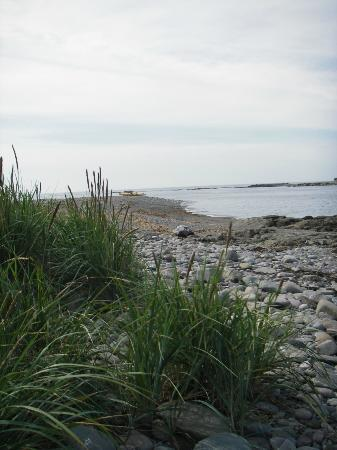 Lower L'Ardoise, Canadá: Beach on the island (reached by sea kayak)