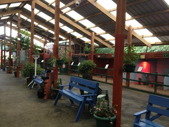 Woodlands Camping and Caravan Park: Avery