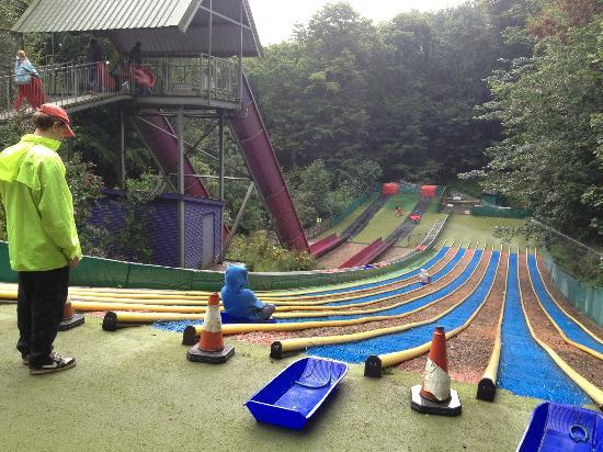 Woodlands Camping and Caravan Park: just 2 of the water slides