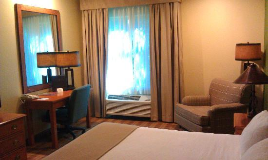 Truckee Donner Lodge: Room with a king-size bed