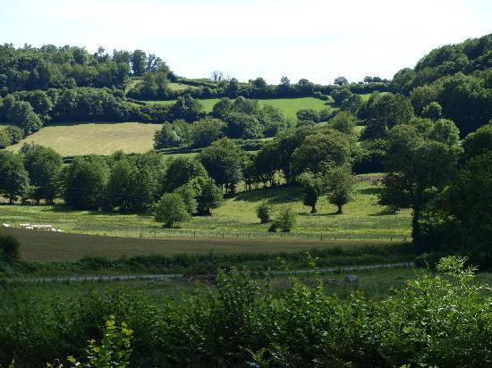 L'Etang de la Fougeraie: Paysage