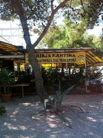 Ribja Kantina - Trattoria del Pescatore