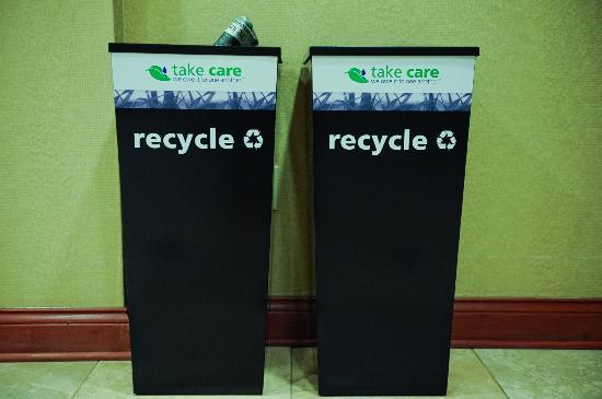 "Hampton Inn & Suites Knoxville - Downtown : Who says ""it ain't easy being green""????"