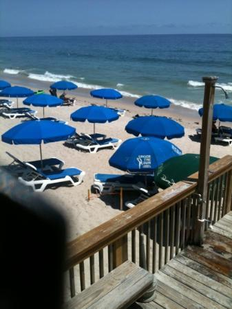 Shucker's: The food was great, and the beach was wonderful. We will be back!