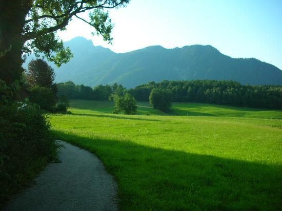 Pension Untersberghof: View of the Staufen
