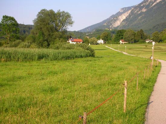 Pension Untersberghof: (Cow) bells across the meadows..en route Bad Reichenhall