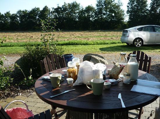 B&B TiendeGaarden: Le panier petit-dej déballé au soleil