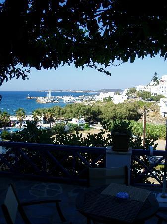 Alexandros Studio Apartments: Vista dal terrazzo privato