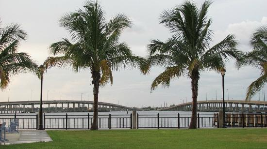 Four Points By Sheraton Punta Gorda Harborside : Charlotte Harbor..view from back of hotel/tiki bar