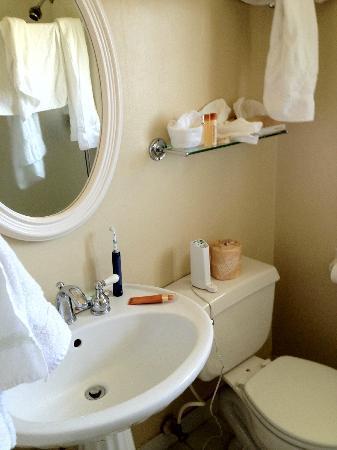 Castle Inn: Tiny bathroom