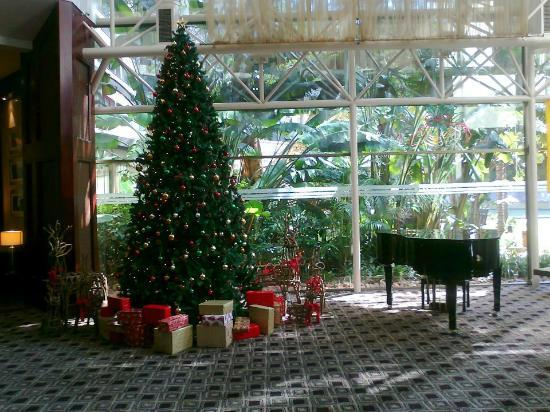 Southern Sun Pretoria: Lobby during christmas
