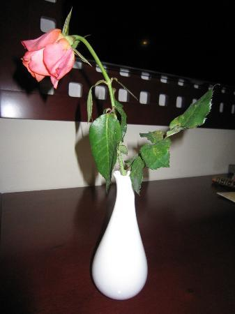 Paragon Saigon Hotel: 無いほうがましな花。。。