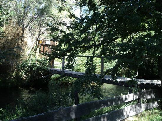 Camping & Hostel Los Coihues: Puentecito