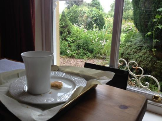 Plas Hen Country Guest House: A welsh garden from a cosy lounge