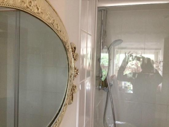 Plas Hen Country Guest House: Clean immaculate bathroom and beautiful mirror