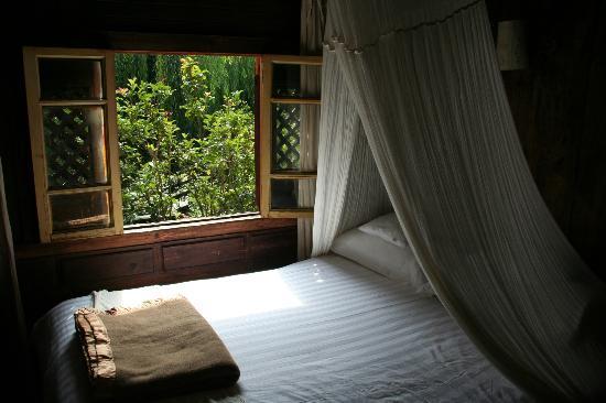 The Laughing Lotus Inn: Room