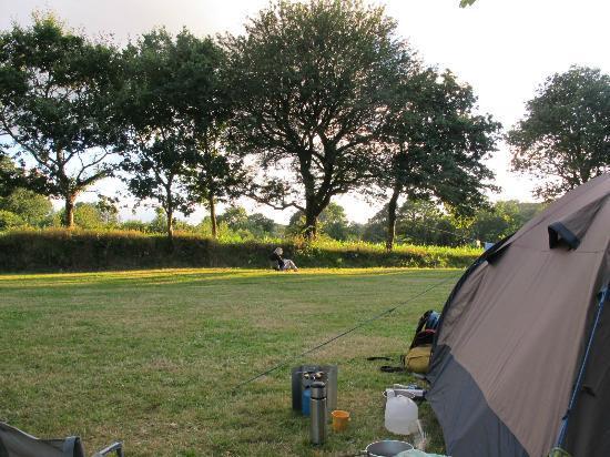 Camping des Bruyeres: Ruimte !