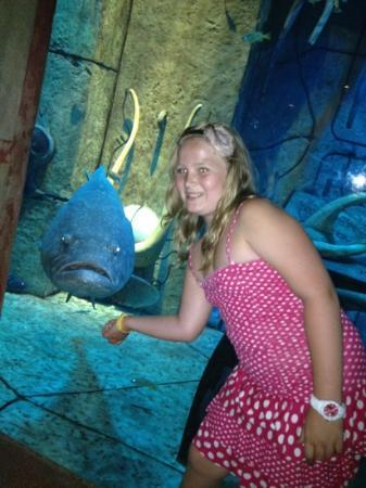 Atlantis, The Palm: with one of the big fish