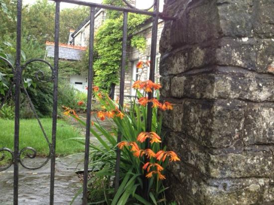 Plas Hen Country Guest House: From the Lane