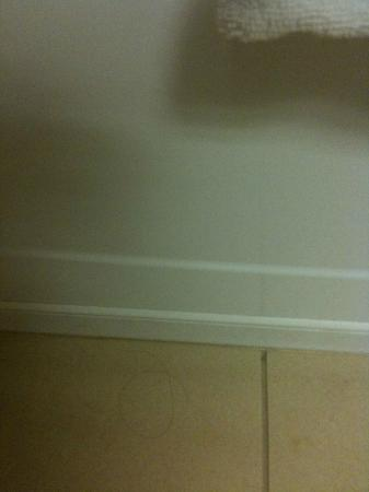 Hampton Inn by Hilton Niagara Falls-North Of The Falls: Hair on bathroom floor, room had not been cleaned properly...