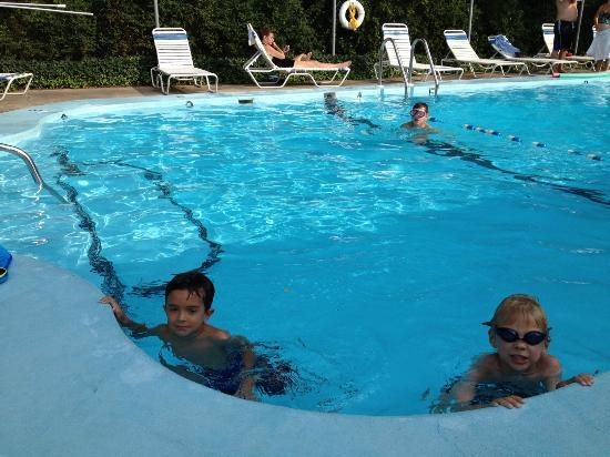 Olde Tavern Motel & Inn: Our boys enjoying the beautiful pool