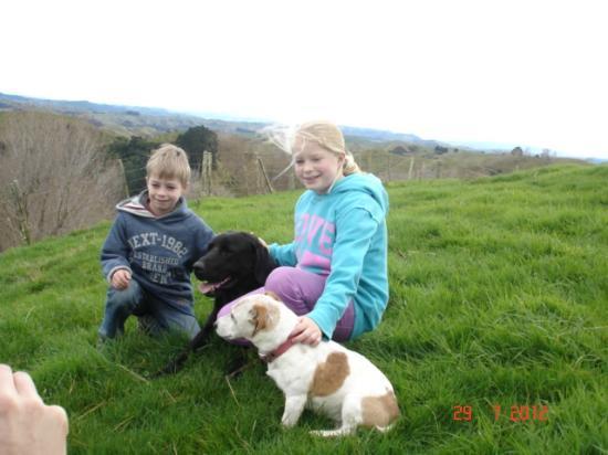 Rangitikei Farmstay: The lovely pet dogs