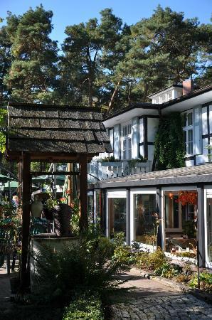 Landhaus Bornicke: Terrasse