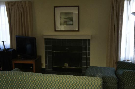 Residence Inn Portland Downtown/Convention Center: Fireplace in Studio suite
