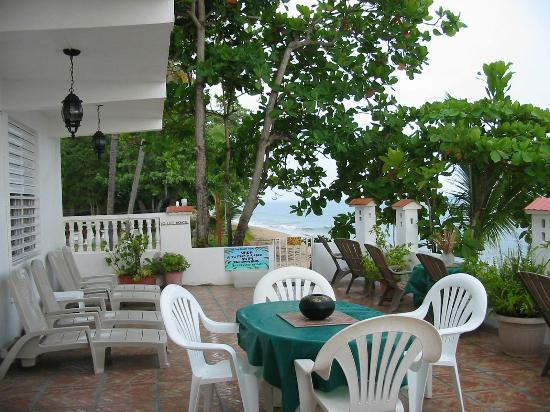 Coconut Palms Inn: The beachfront patio