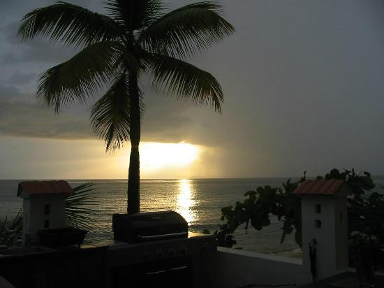 Coconut Palms Inn: Just 1 of the 100 sunset photos I took