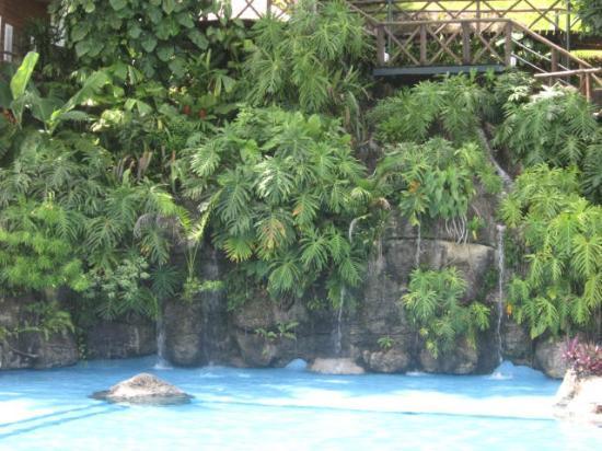 Hotel Villa Caribe : Piscine de rêve