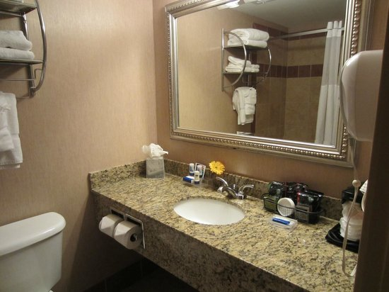 Clarion Inn Tulsa International Airport: Deluxe - Bathroom