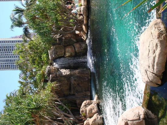 Surfers Paradise Marriott Resort & Spa: Das Schwimmbecken_4