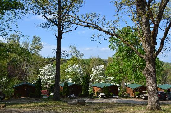 Yogi Bear's Jellystone Park Mammoth Cave : Log cabins on a spring day