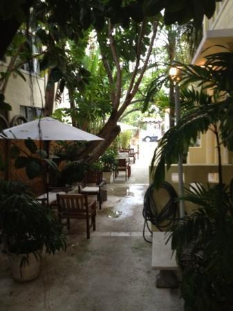 Villa Paradiso: giardino