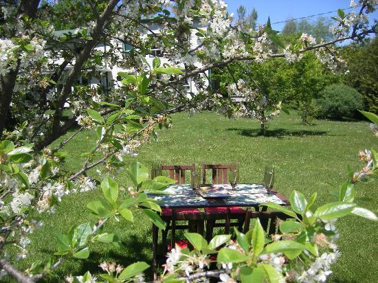 La Taniere Gite B&B: Garden view