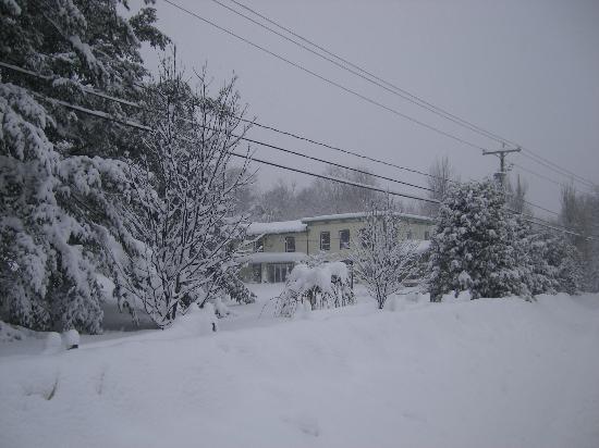 La Taniere Gite B&B : Beautiful winter!