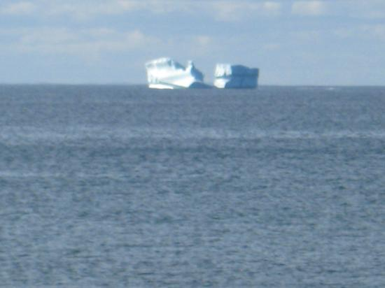 Abbott's Cape Shore Bed and Breakfast: Iceberg on back of our house.