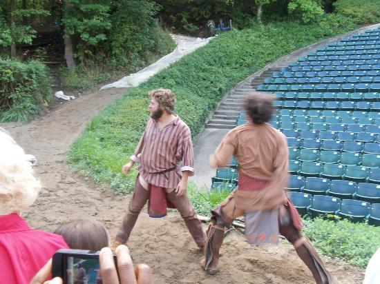 A little fight picture of tecumseh outdoor historical for Outdoor drama