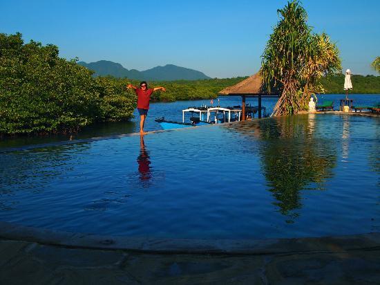 Mimpi Resort Menjangan: the infinity pool